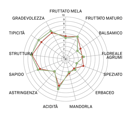 aromagramma greco di tufo vcr5