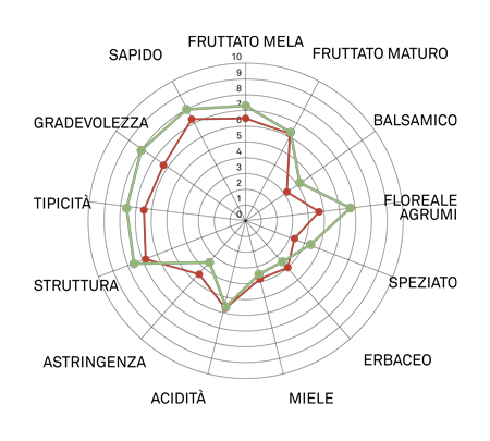 aromagramma pignoletto vcr433
