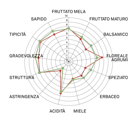 aromagramma riesling renano r2