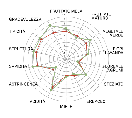 aromagramma sauvignon vcr328