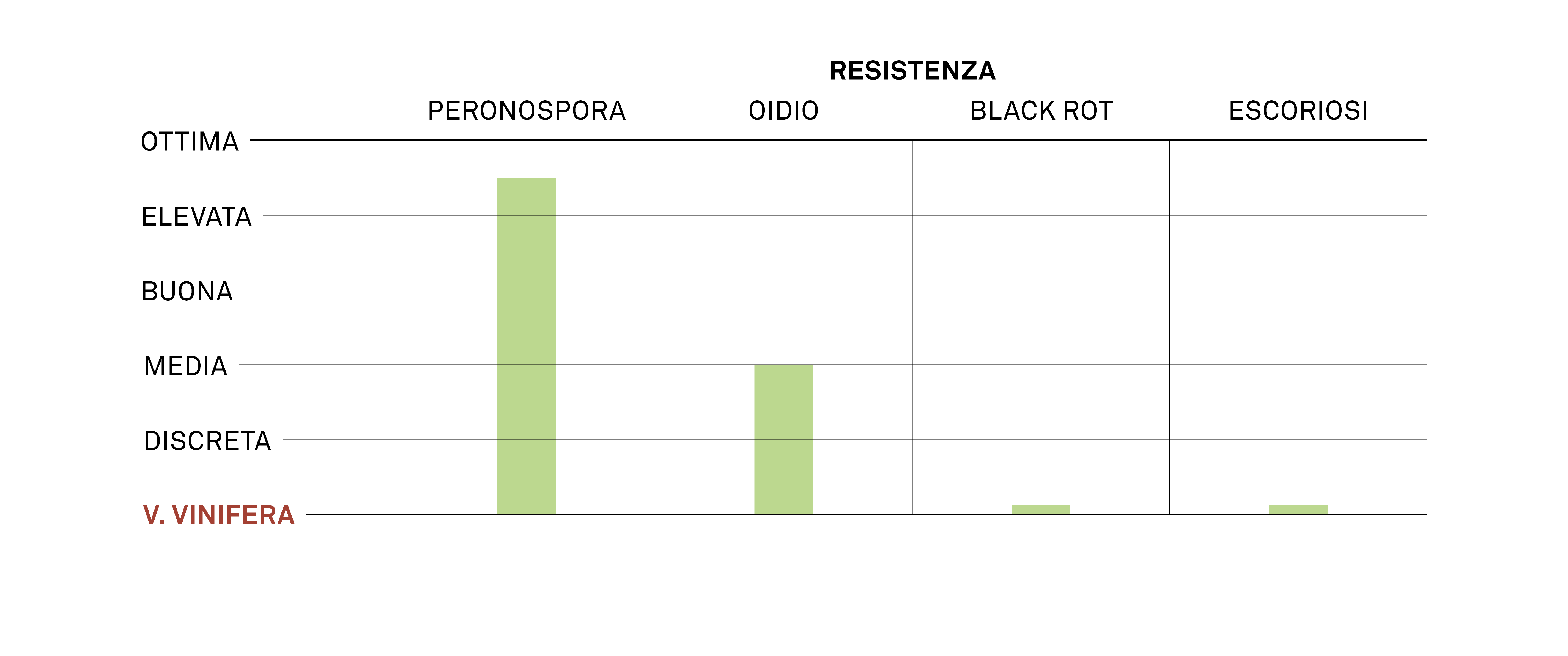 aromagramma merlot khrous
