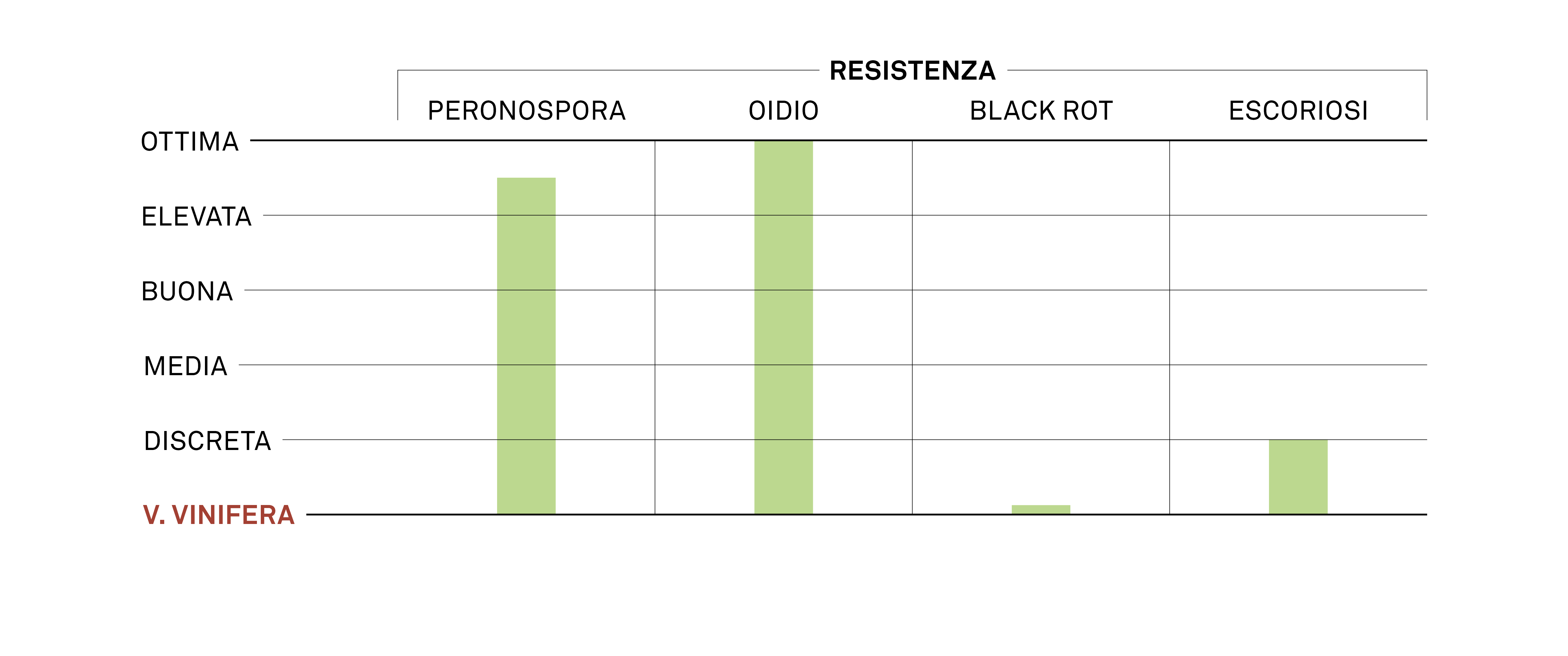 aromagramma